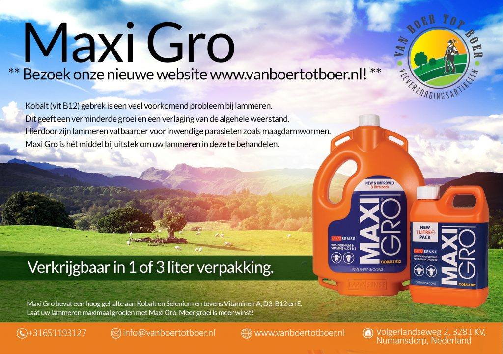 Advertentie Design | Maxi Gro